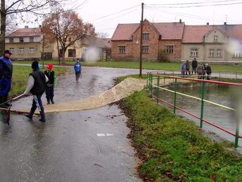 Výlov rybníka vBílově - foto 05